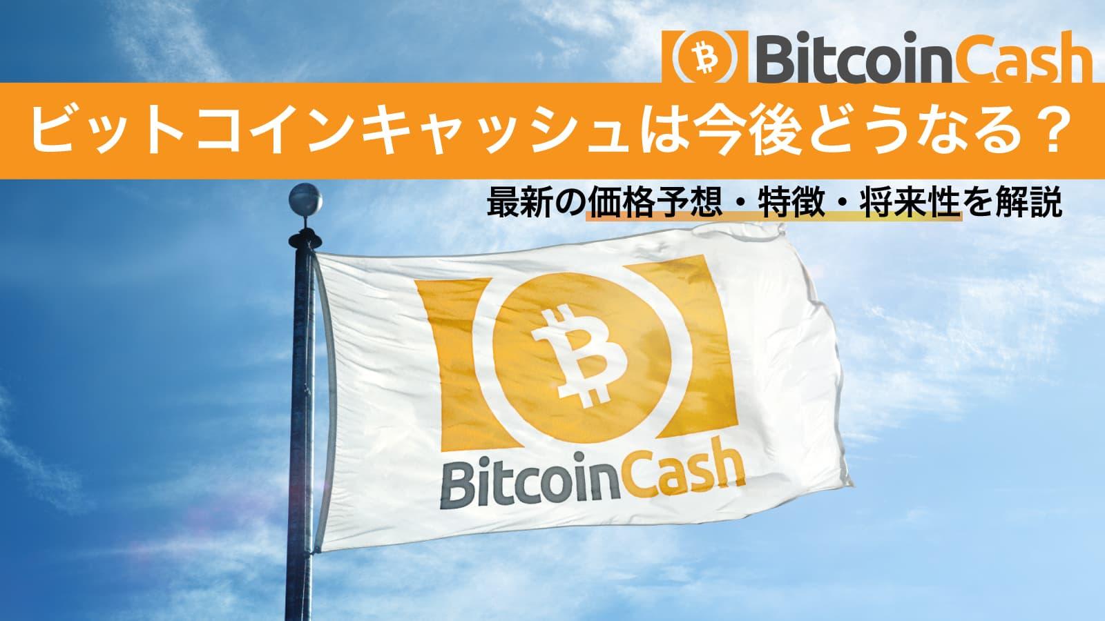 【2020年版】ビットコインキャッシュは今後どうなる?最新の価格予想・特徴・将来性を解説のアイキャッチ画像
