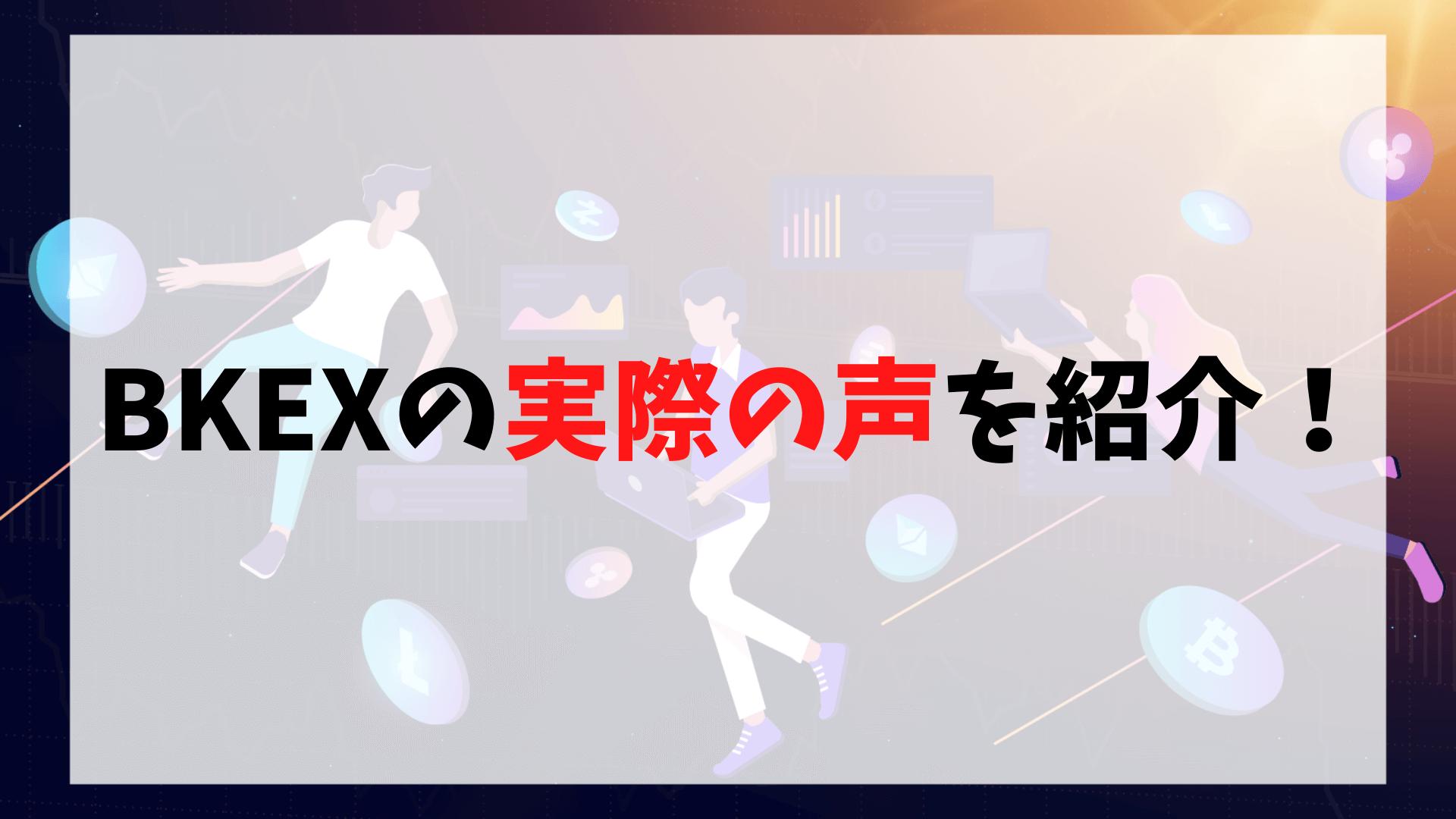 BKEXの口コミ・評判